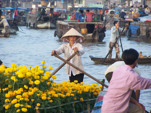 Cruising With Bassac In Mekong Delta